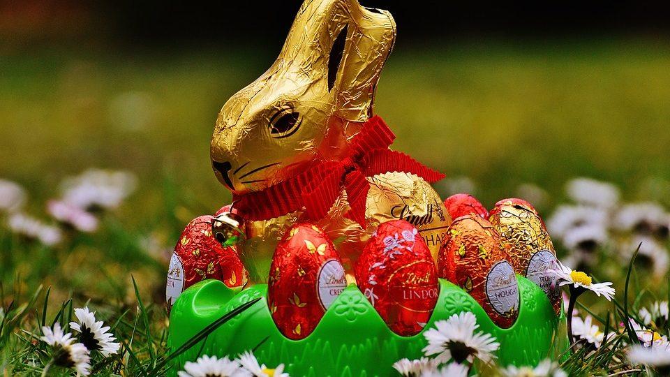 Cokoladna jaja cokoladni zec